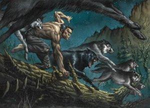 wolverine250